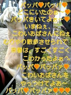 f0148927_184793.jpg