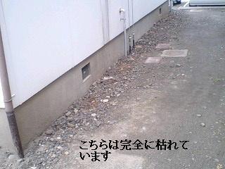 f0031037_17492110.jpg