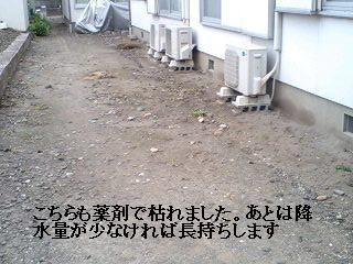 f0031037_17493987.jpg