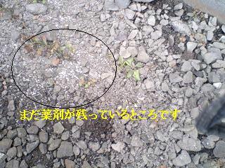 f0031037_17495693.jpg