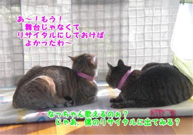 d0139352_011591.jpg