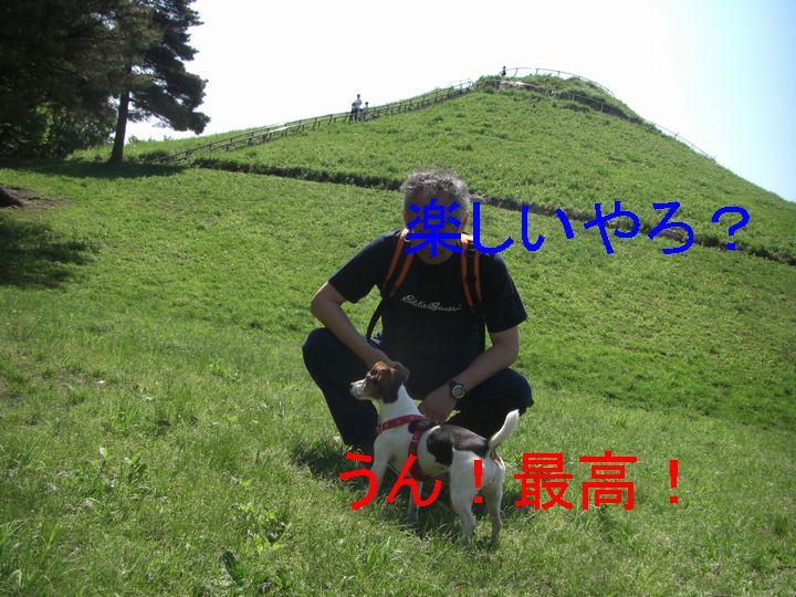 f0053952_1451447.jpg