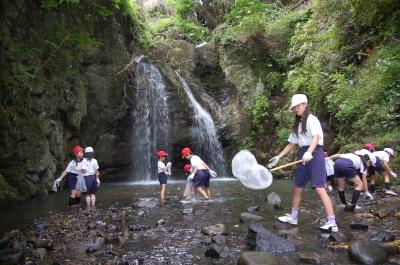 箱作小学校4年学習サポート「田山川の水生生物観察」_c0108460_2140420.jpg