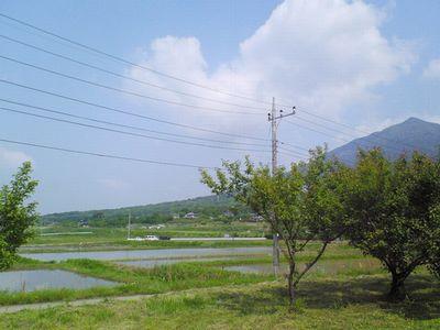 5月 こぎれ市 プチ情報_e0143294_1728324.jpg