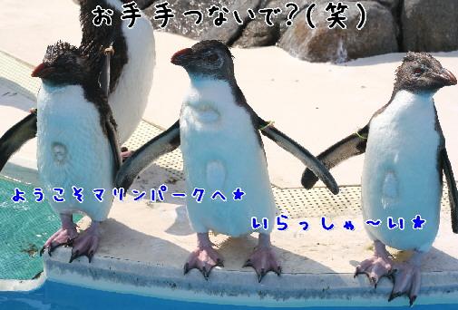 d0013149_7522477.jpg