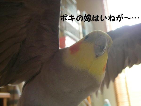 f0132055_9211175.jpg