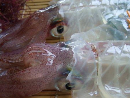 加部島の「かべしま」でイカを食べる!_f0167281_2120016.jpg