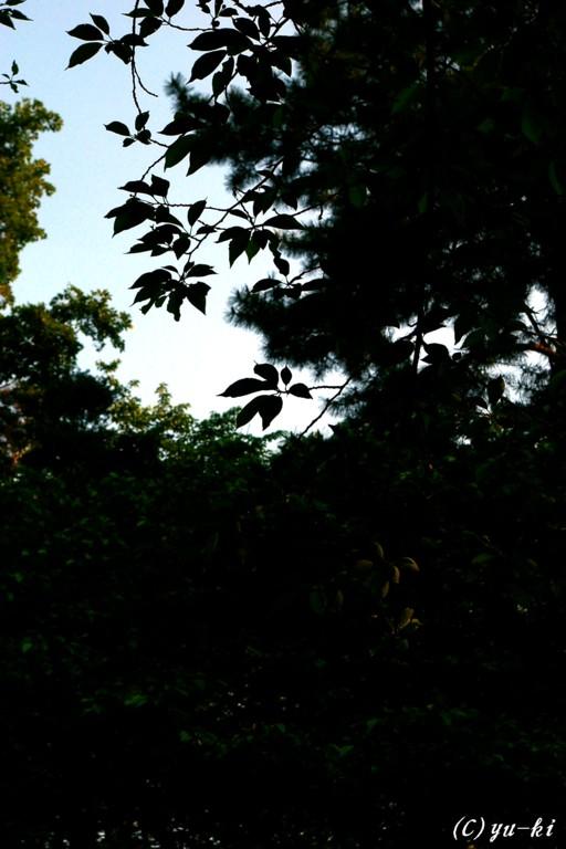 f0156895_18513237.jpg