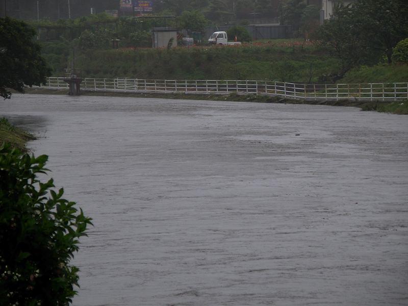 今朝のMFの川は???_b0024798_9344267.jpg