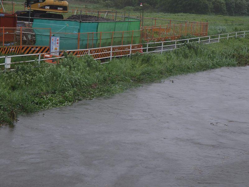 今朝のMFの川は???_b0024798_936693.jpg