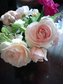 ブルソーのバラ 初めての開花_f0007106_6231027.jpg
