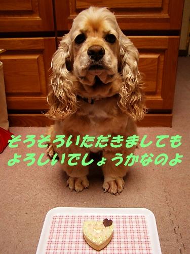 b0067012_143791.jpg