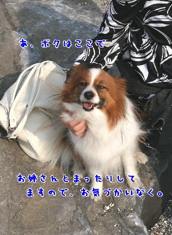 d0013149_10262551.jpg