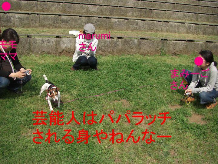 f0053952_106426.jpg