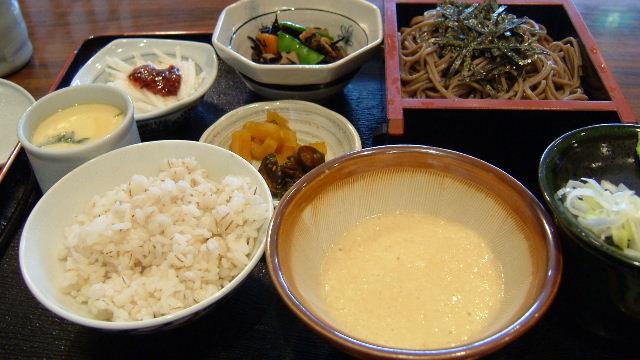 鎌倉旅行2006 ⑭鎌倉とろろ茶屋でランチ_d0029066_7371670.jpg