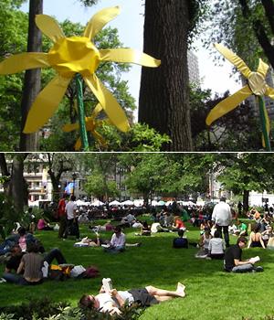 ユニオン・スクエアの芝生がいい感じになってきました_b0007805_20172280.jpg