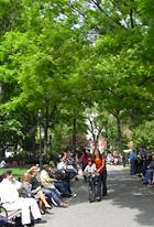 ユニオン・スクエアの芝生がいい感じになってきました_b0007805_20173610.jpg