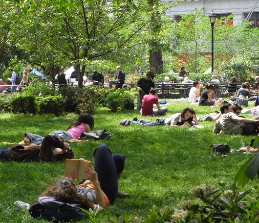 ユニオン・スクエアの芝生がいい感じになってきました_b0007805_201802.jpg