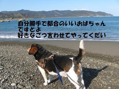 d0104209_2223177.jpg
