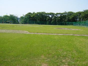 5月22日(木) (仮称)目白台運動公園の整備状況_e0093518_17455942.jpg