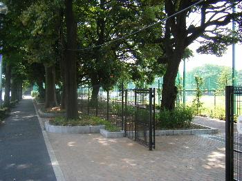 5月22日(木) (仮称)目白台運動公園の整備状況_e0093518_17522724.jpg
