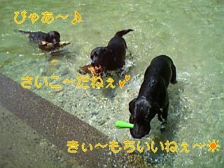 f0148927_19521657.jpg