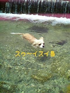 f0148927_1954951.jpg