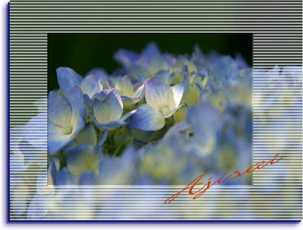 f0164592_8503810.jpg