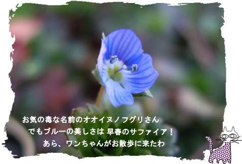 f0137096_2394317.jpg