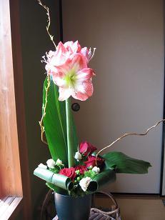 アマリリスの花束_c0098807_0312462.jpg