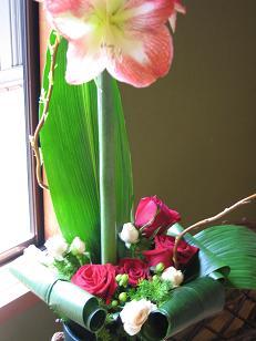 アマリリスの花束_c0098807_032013.jpg
