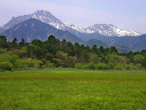 初夏の八ヶ岳高原_d0127634_2130102.jpg