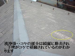 屋根の高圧洗浄作業_f0031037_1634213.jpg