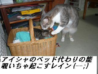 b0112380_19483676.jpg