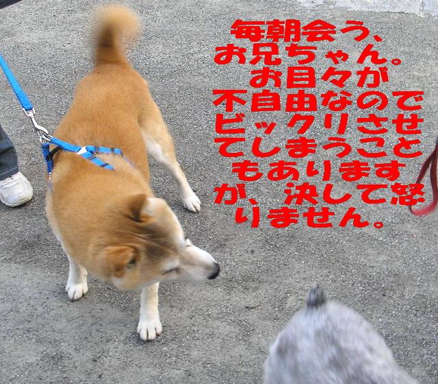 c0138198_23511919.jpg