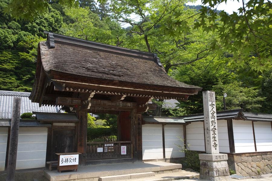 新緑の室生寺(1)_b0043304_1335380.jpg