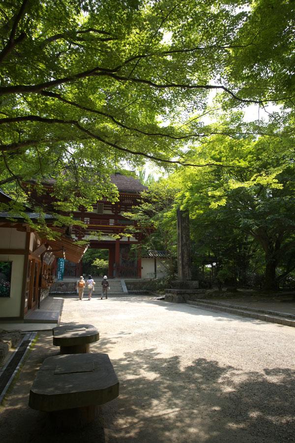 新緑の室生寺(1)_b0043304_1342458.jpg