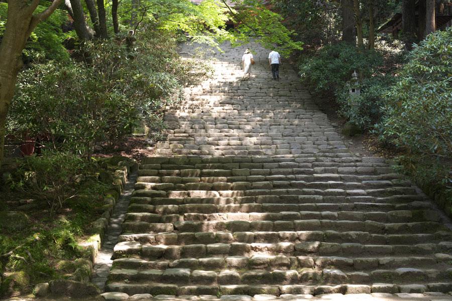 新緑の室生寺(2)_b0043304_1564690.jpg