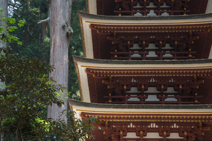 新緑の室生寺(3)_b0043304_204438.jpg