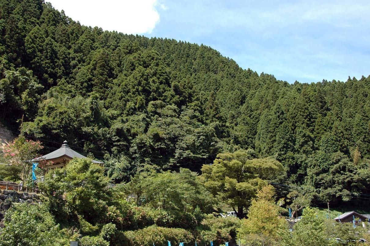 白糸の滝 壁紙写真_f0172619_15523345.jpg