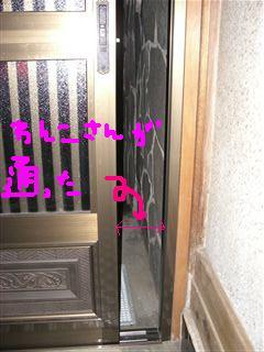 f0168421_2146436.jpg