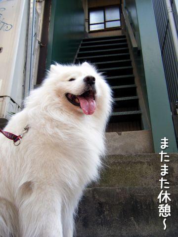 ピッカリお天気_c0062832_1710512.jpg