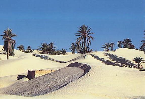 追憶のチュニジア (1)_c0011649_9141379.jpg