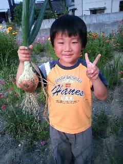 収穫~♪ その2_f0096955_112509.jpg