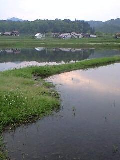 田植えは、雨天決行です_f0071456_23163015.jpg