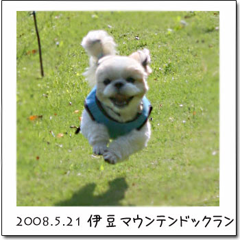 b0024183_13472056.jpg