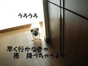 c0139488_15142272.jpg