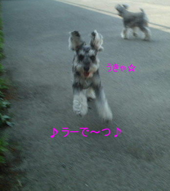 d0079701_2001837.jpg