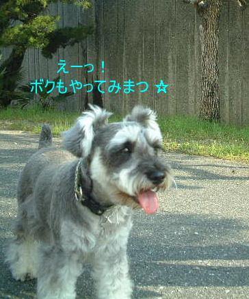 d0079701_2015554.jpg