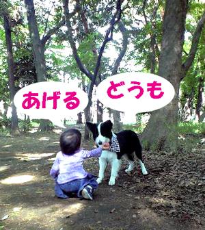 f0132070_16441.jpg